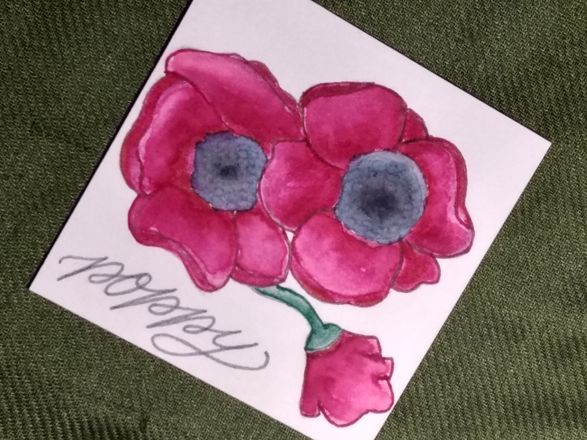 Tutorial: Poppy Flower Color